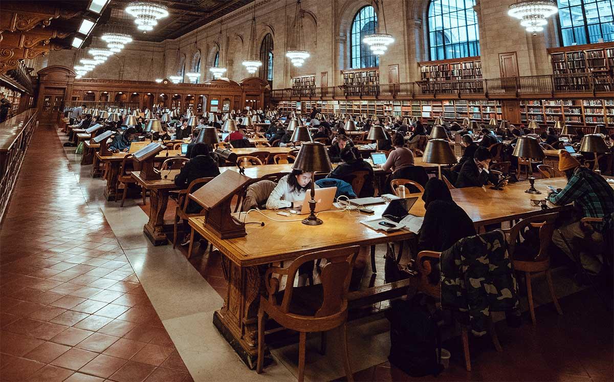 Как быть востребованным на рынке труда - дополнительные курсы - фото